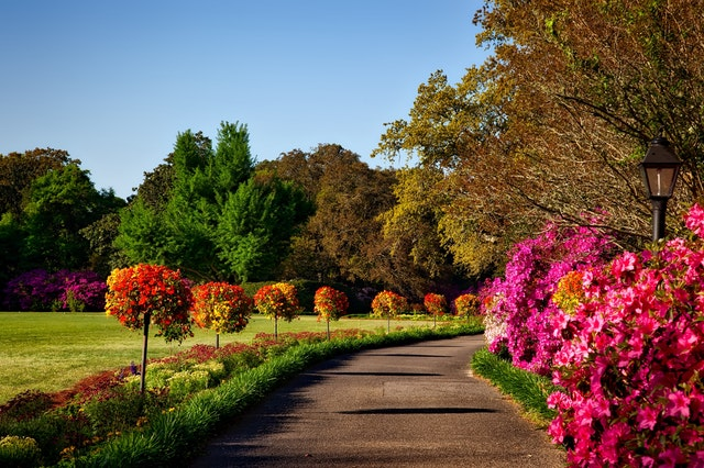 Blooming Lovely Gardens To Visit