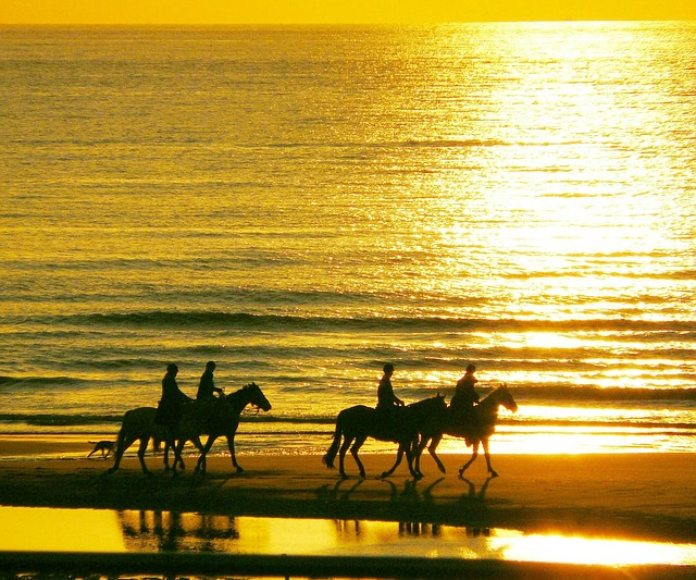 Horses and Holidays – Do The Two Mix?