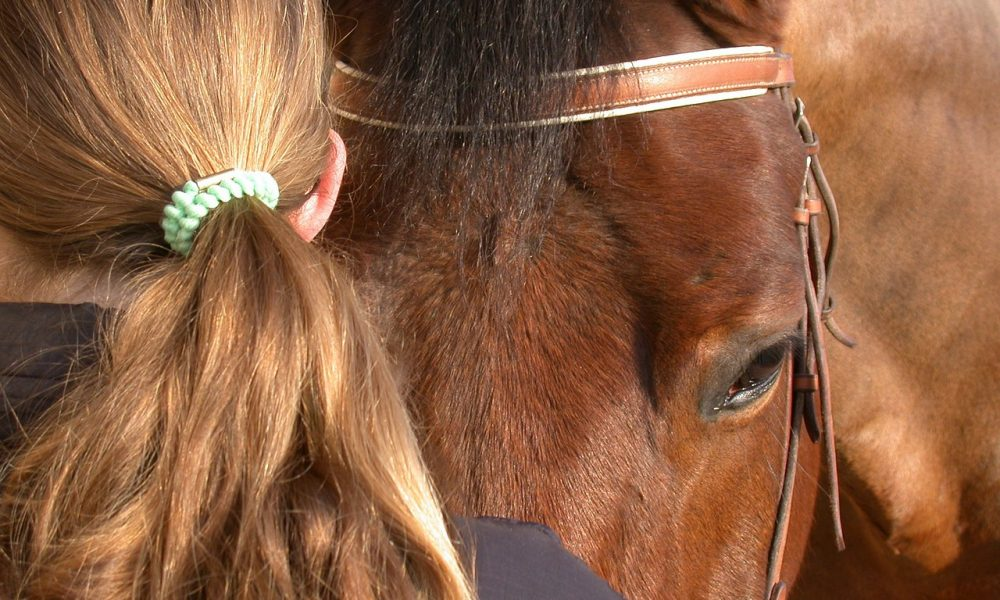The Unspoken Bond Between Horse and Human