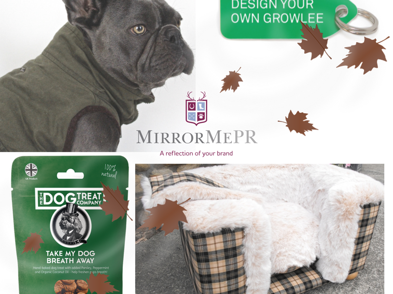 Treat Your Dogs This Autumn