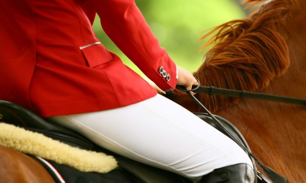 Why Your Back Health Is Just As Important As Your Horse's