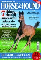 MirrorMePR In Horse & Hound