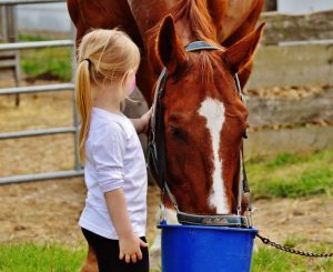 little girl with a horse