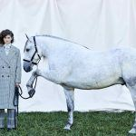 Combining a Passion For Photography, Fashion & Horses to Start a Career
