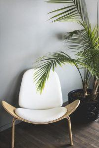 A white chair next to a green plant