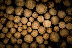 Logs stacked on top of each other