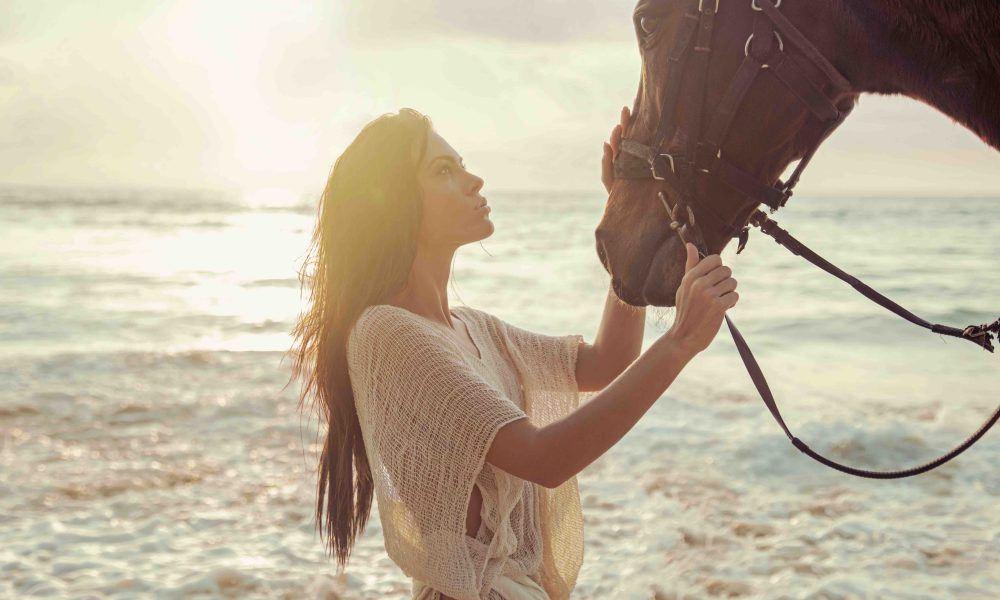 MirrorMePR Leaders in equestrian pr