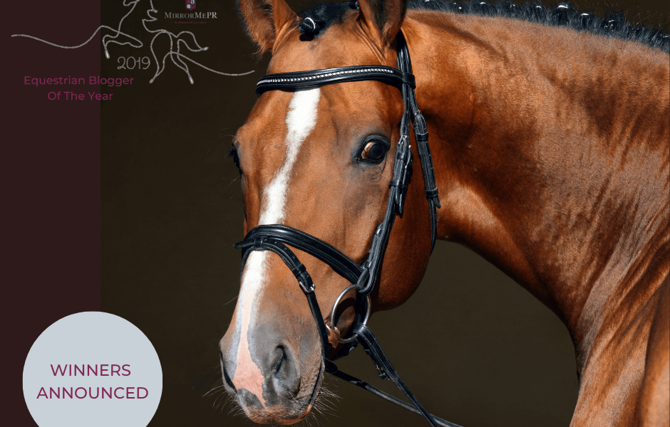 An Exciting Conclusion To The Equestrian Blogger/Vlogger Awards