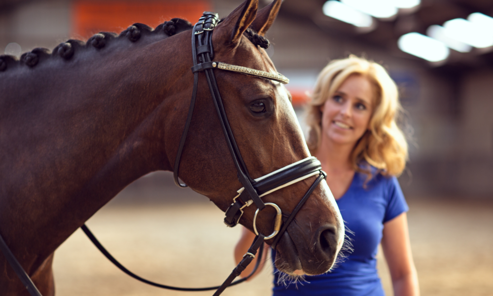 woman with new horse seeking advice